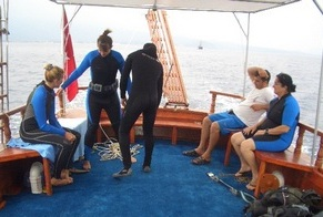 daily dive tours - experienced