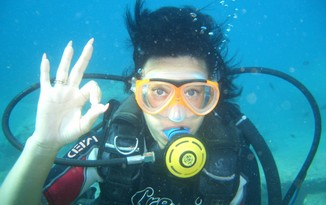 daily dive tours - discovery